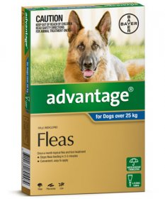 Advantage for Extra Large Dogs 56-110lb (Blue, 25kg+)