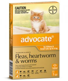 Advocate for Small Cats 0-9lb (Orange, 0-4kg)